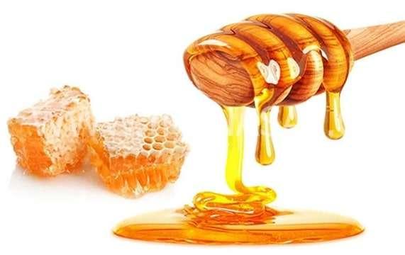 عسل و تقویت قوای جنسی