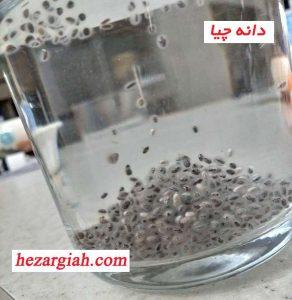 http://hezargiah.com/wp-content/uploads/2018/03/chia-seed-mine-292x300.jpg