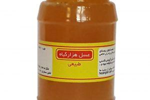 عسل طبیعی هزارگیاه۹۷