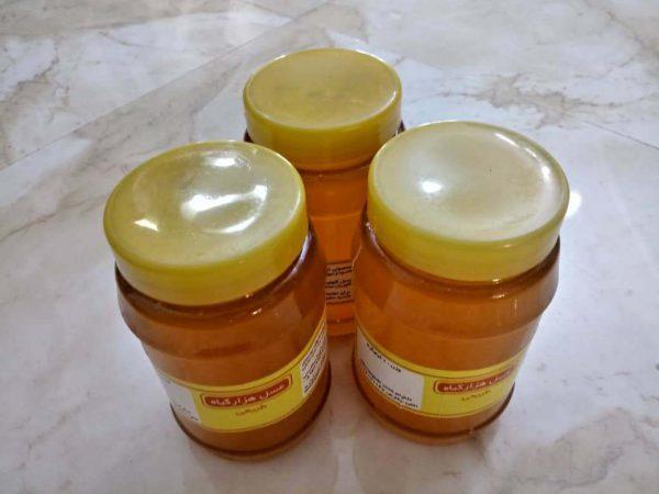 عسل طبیعی هزارگیاه 3 کیلویی96