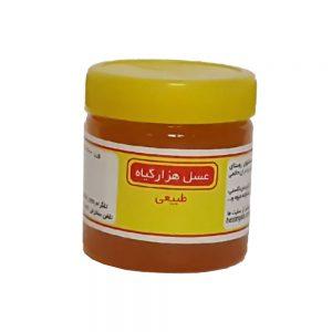 عسل طبیعی هزارگیاه 400 گرمی